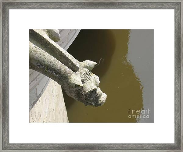 Thirsty Gargoyle Framed Print