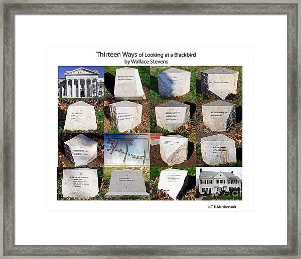 Thirteen Ways Of Looking At A Blackbird Framed Print