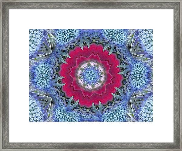 Thistle Portal Mandala Framed Print
