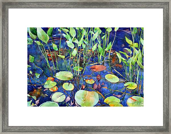 Thoughts Turn To Spring Framed Print