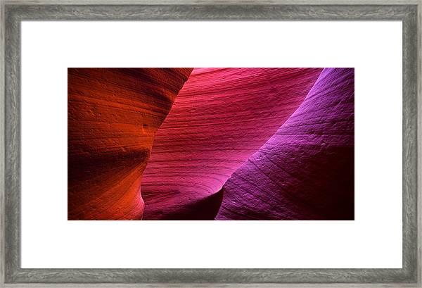 Three Flavors Framed Print