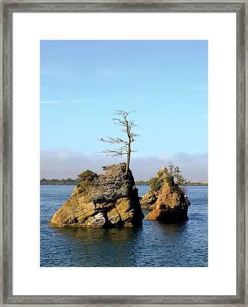 Three Graces Framed Print