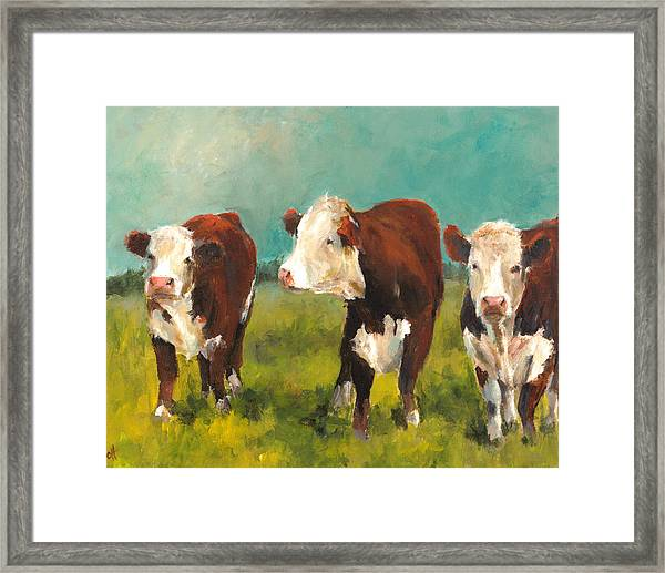 Three Herefords Framed Print by Cari Humphry