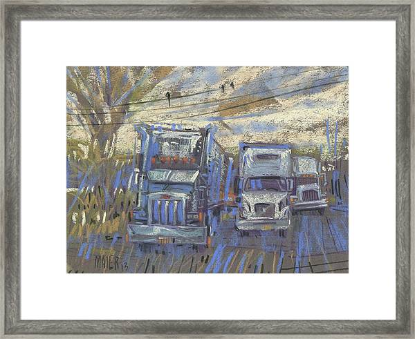 Three On A Wire Framed Print by Donald Maier