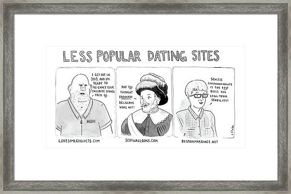 Three Panel Cartoon Of Online Dating Profiles Framed Print