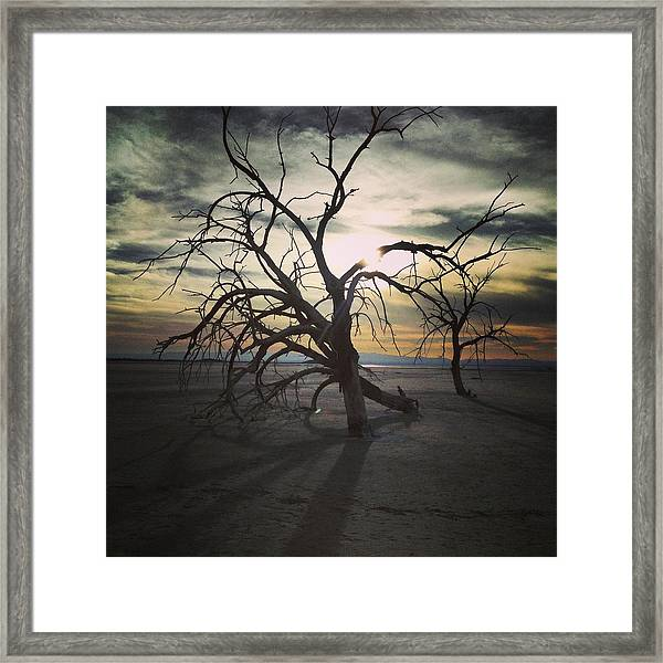 Three Sisters #3 Framed Print
