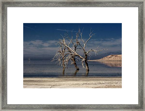 Three Sisters #5 Framed Print