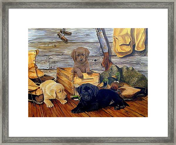 Three Times The Trouble Framed Print