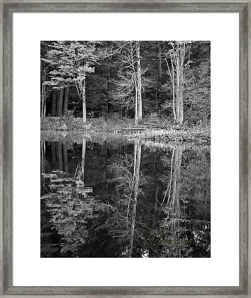 Threes Framed Print