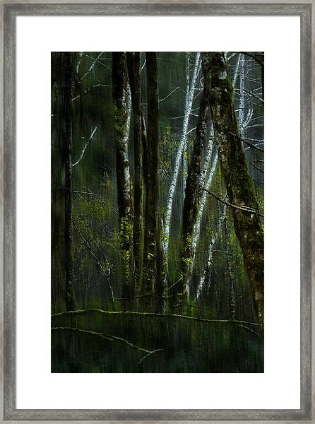 Through A Glass . . . Darkly Framed Print