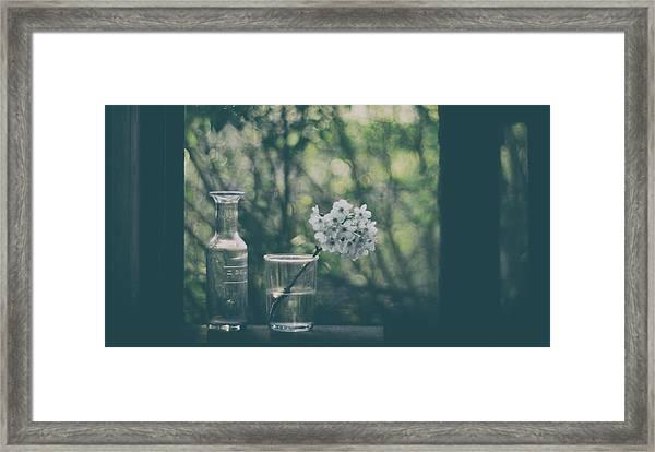 Through The Open Window Framed Print