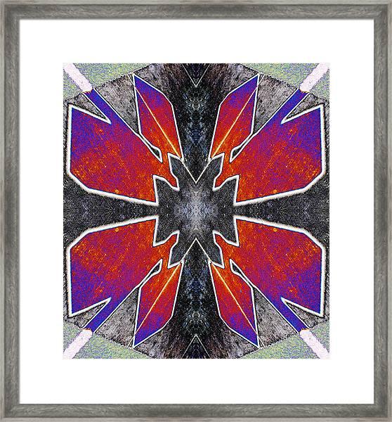 Thunderbird Pairs 2013 Framed Print