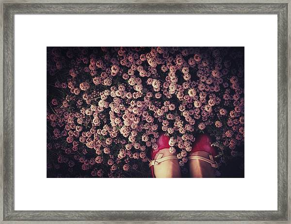 Thyme Carpet Framed Print by Takako Fukaya