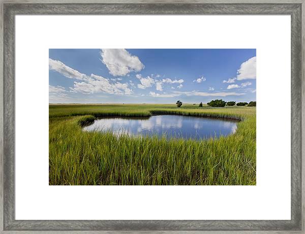 Tidal Pool Image Art Framed Print