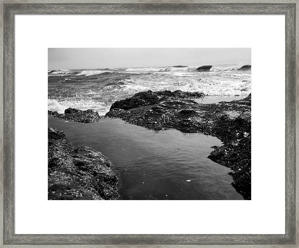 Tide Pool Framed Print