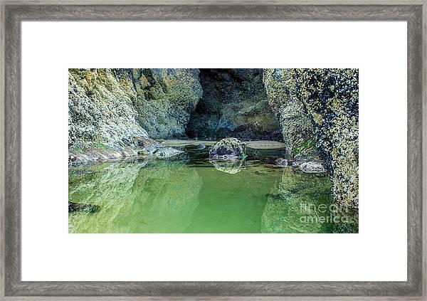 Tidepool Shades Of Green At Sunrise Framed Print