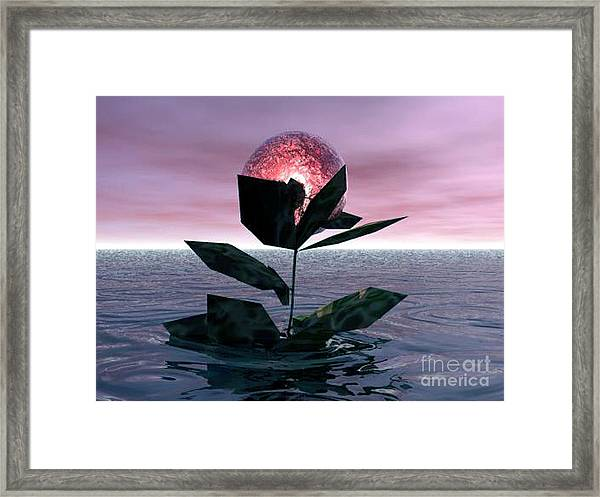 Tides Of Love Framed Print