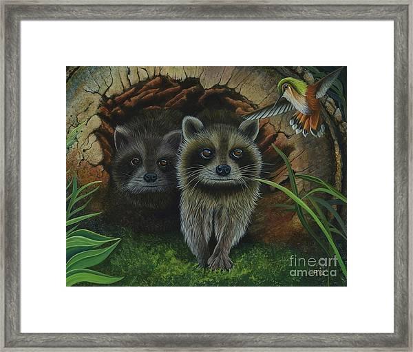 Tiffany And Raccoons Framed Print