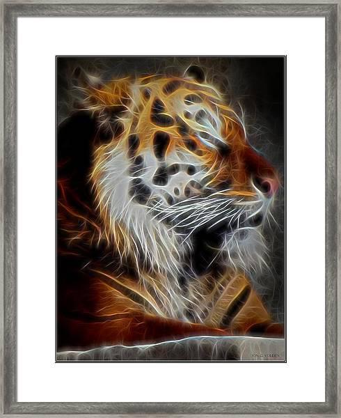 Tiger At Rest Framed Print
