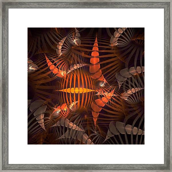 Tiger Shrimp Framed Print