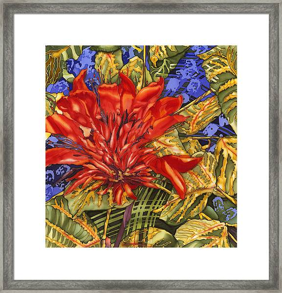 Tiger's Claw Framed Print