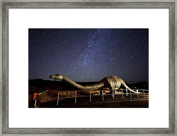 Timeless Beauty Framed Print