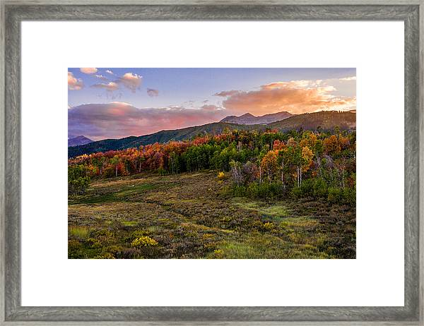 Timp Fall Glow Framed Print