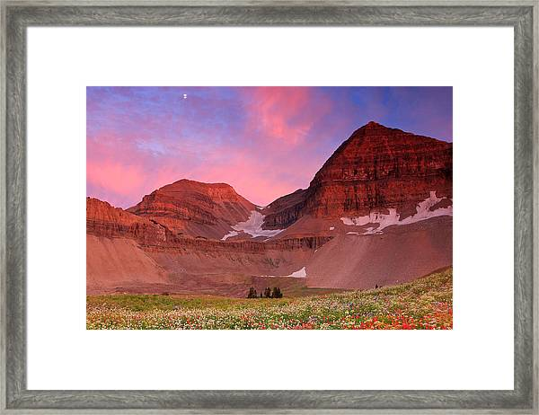 Timpanooke Meadow Sunset Framed Print