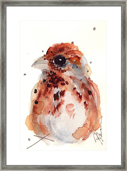 Tiny Sparrow Framed Print