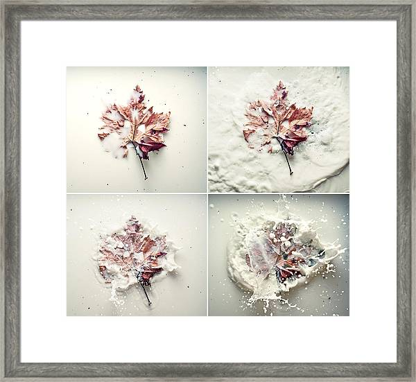 To Be Born Framed Print