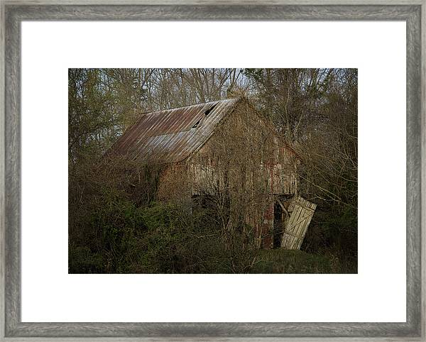 To Be Versed In Country Things Framed Print