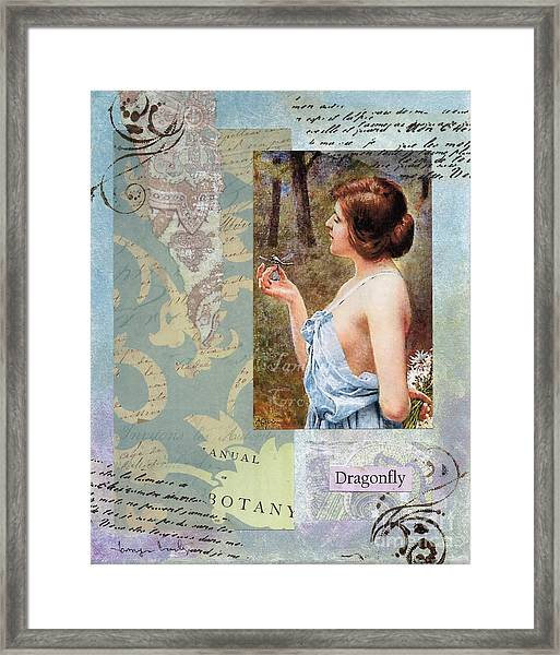 To Study The Dragonfly Framed Print