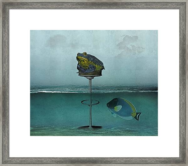 Toadstool Obviously Framed Print