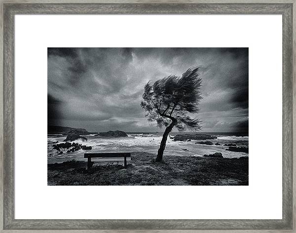 Today No One Framed Print