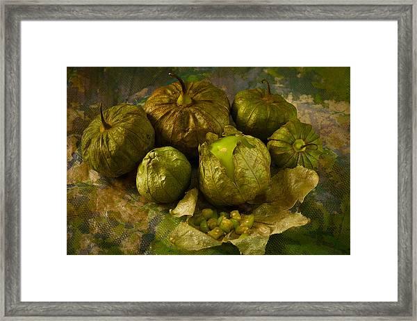 Tomatillos3656 Framed Print