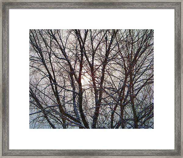 Too Cold For The Sun Framed Print