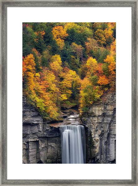 Top Of The Falls Framed Print