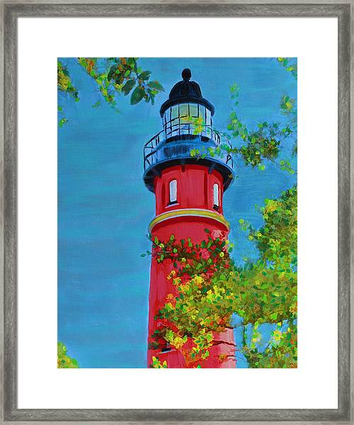 Top Of The House Framed Print
