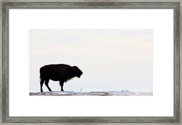 Top Of The Ridge Framed Print
