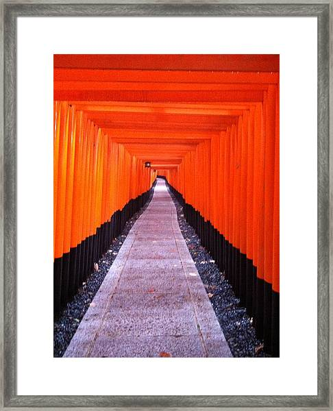 Torii Gates In Fushimi-inari Japan Framed Print