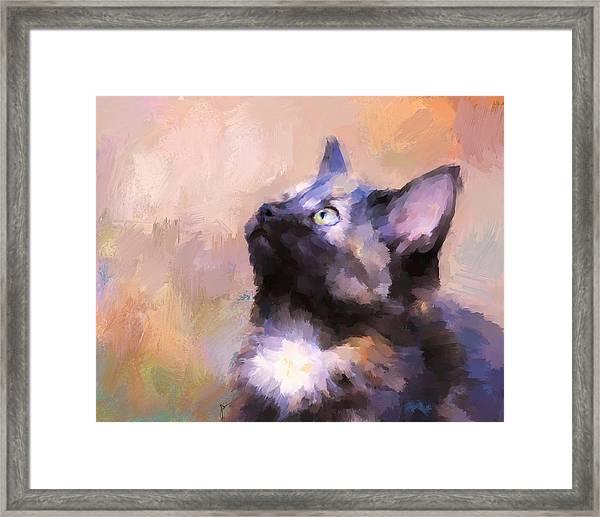 Tortoiseshell Kitten #3 Framed Print