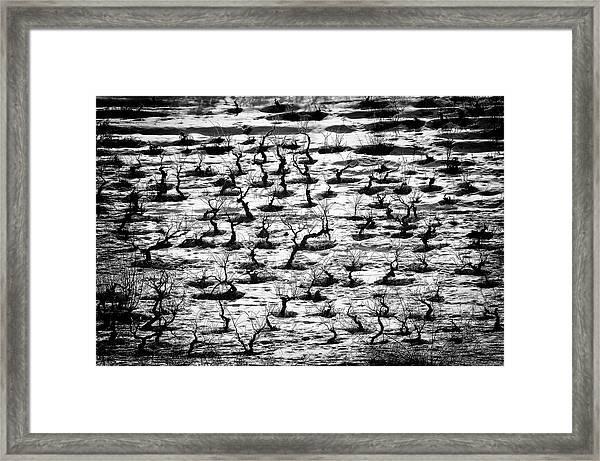 Tortured Souls. Framed Print