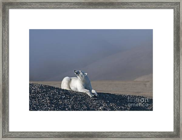 Total Bliss.. Framed Print