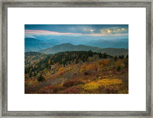 Touch Of Yellow Framed Print