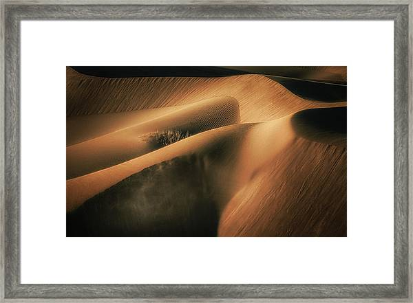 Touch The Wind Framed Print