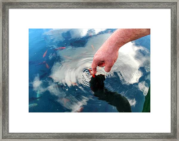 Touching The Sky Framed Print
