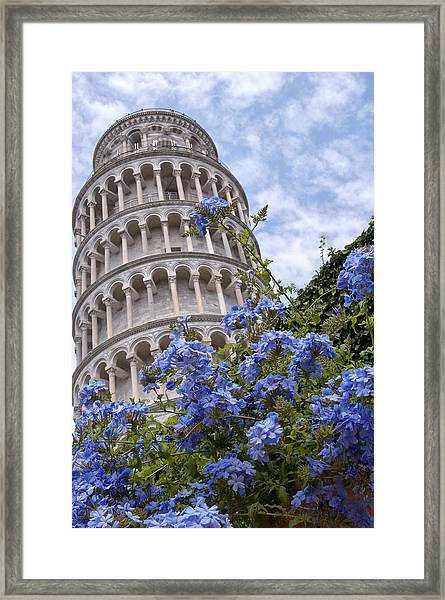 Tower Of Pisa With Blue Flowers Framed Print