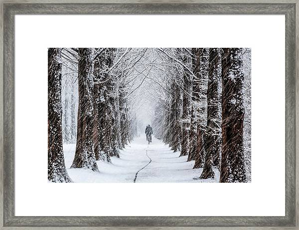 Trace Framed Print by Tiger Seo