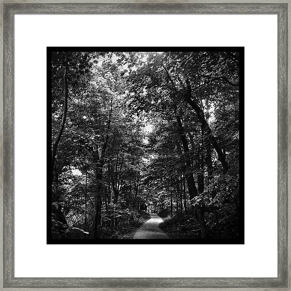 Trail To Love Framed Print