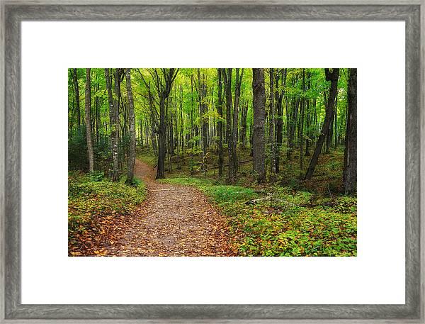 Trail To Miners Falls Framed Print